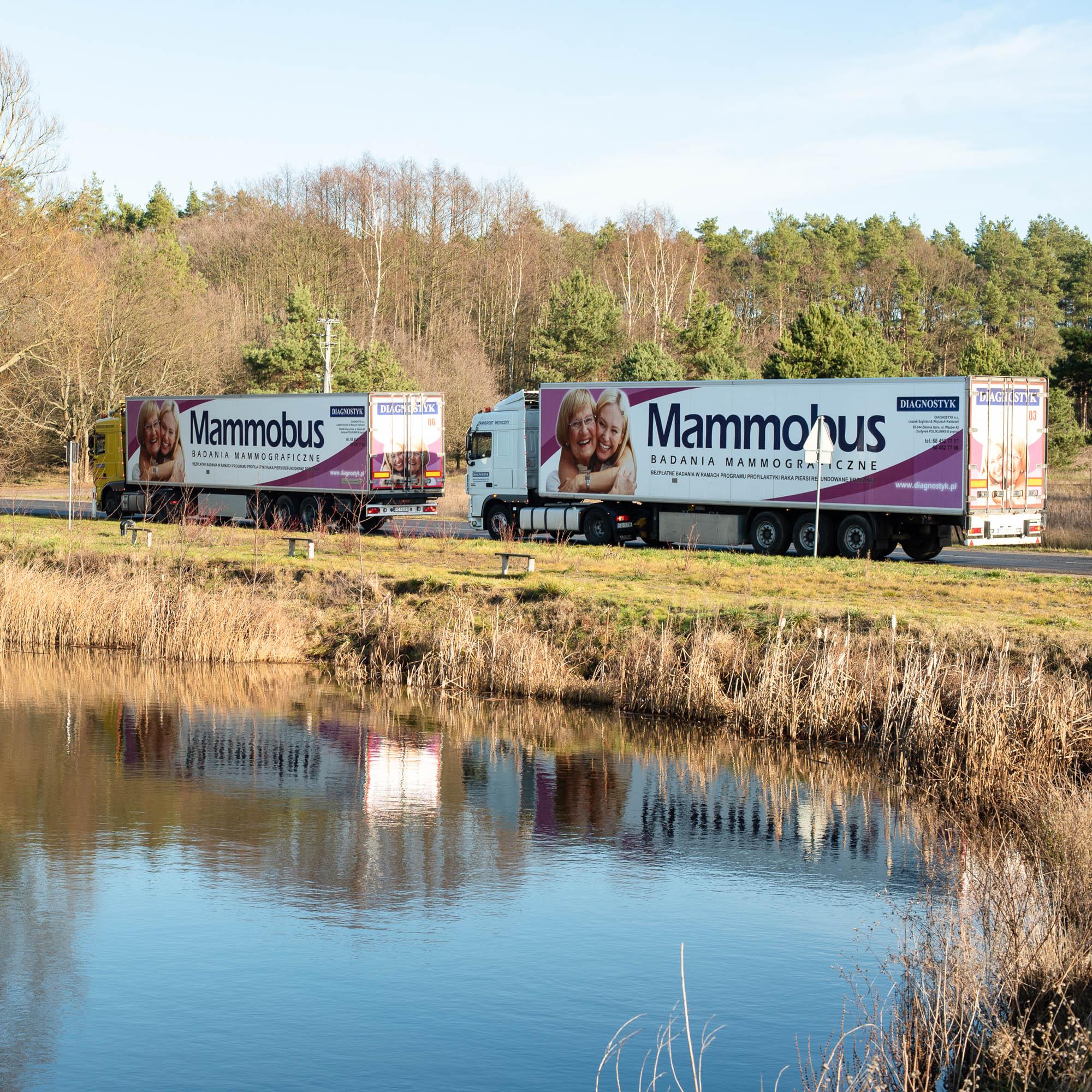 Dwa mammobusy w drodze